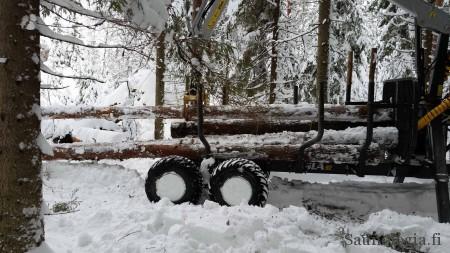 160319 metsavaunu ja puiden keraily
