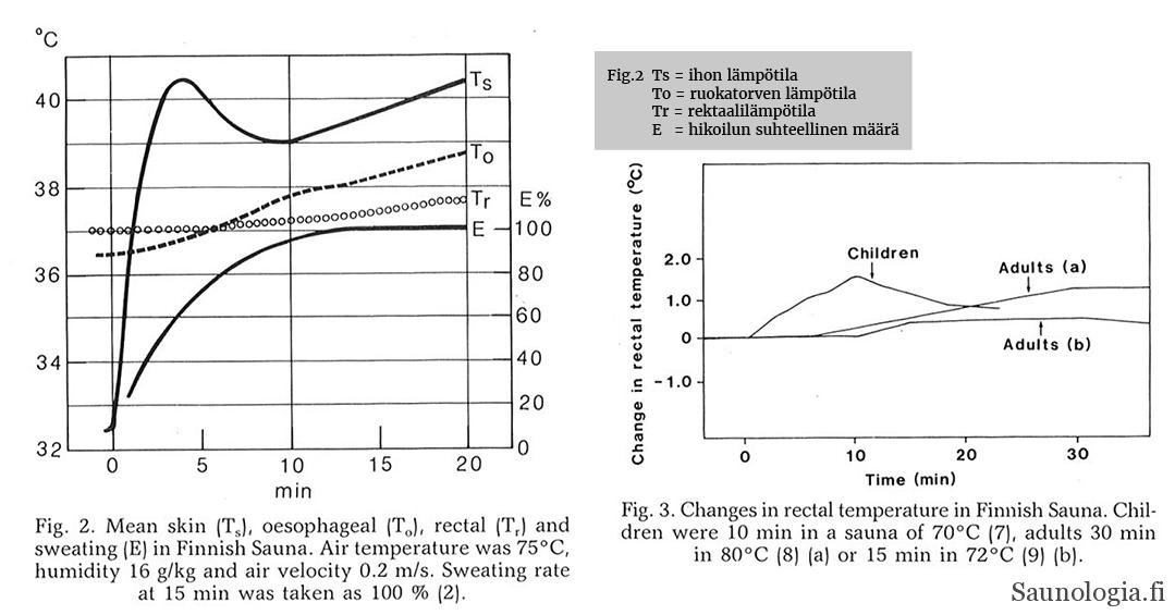 Ruumiin lämmön nousu saunassa aikuiset vs. lapset