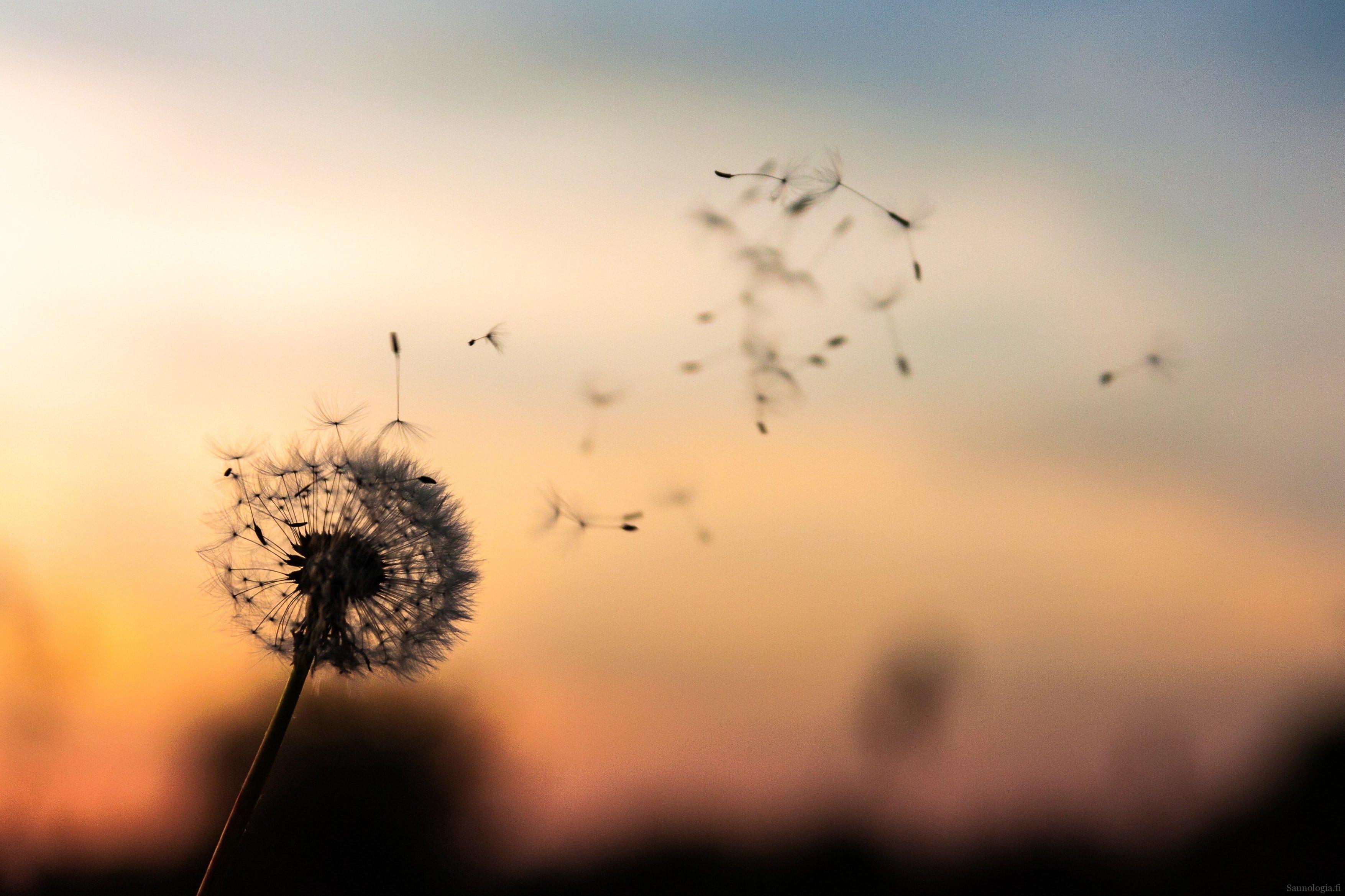 Vaihtoehtoja painovoimaisen ilmanvaihdon toteuttamiseen